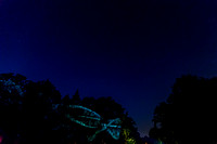 Longwood Nightscape